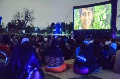 bosque cinema